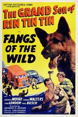 Fangs of the Wild, Rin Tin Tin Jr., Dennis Moore, 1939