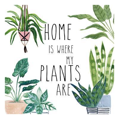 Plant Home II
