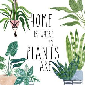 Plant Home II by Farida Zaman