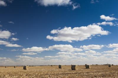 https://imgc.allpostersimages.com/img/posters/farm-field-sioux-falls-south-dakota-usa_u-L-PXR9RO0.jpg?artPerspective=n