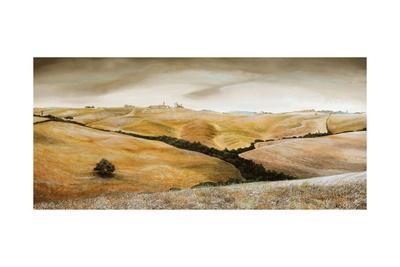 https://imgc.allpostersimages.com/img/posters/farm-on-hill-tuscany-2001_u-L-PJFC3H0.jpg?p=0