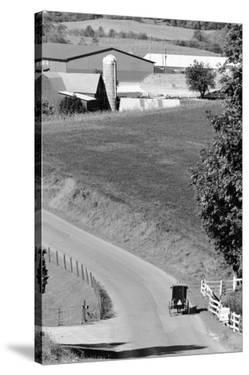Farm Road, Ohio