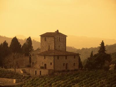 Farms and Vines, Tuscany, Italy