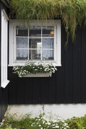 https://imgc.allpostersimages.com/img/posters/faroes-vagar-bour-house-window_u-L-Q1EY98N0.jpg?artPerspective=n
