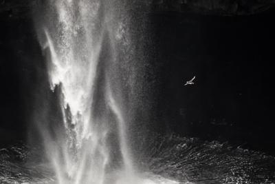 https://imgc.allpostersimages.com/img/posters/faroes-vagar-gasadalur-puffin-fratercula-arctica-waterfall_u-L-Q1EY6QK0.jpg?artPerspective=n