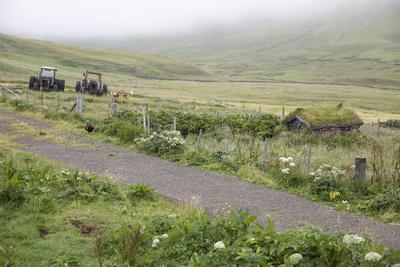 https://imgc.allpostersimages.com/img/posters/faroes-way-agriculture_u-L-Q1EYD6Q0.jpg?artPerspective=n