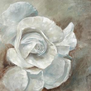 Chiffon in Cream by Farrell Douglass