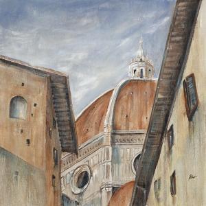 Ii Duomo Di Firenze by Farrell Douglass