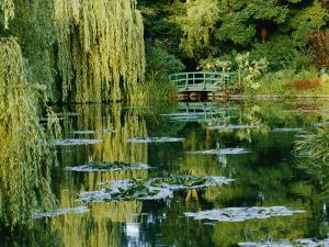 Subtle Light and Shade Reveal Impressionist Painter Claude Monets Self-Designed Gardens at Giverny by Farrell Grehan