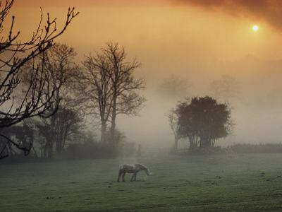 The Countryside Around Swansea, Birthplace of Dylan Thomas
