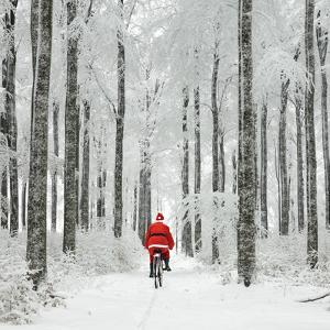 Father Christmas on a Bicycle in Snow
