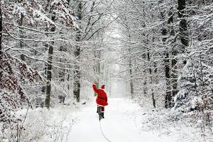 Father Christmas Riding Bicycle Through Beech