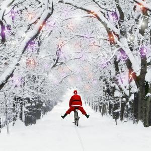 Father Christmas Riding Through Avenue in Winter