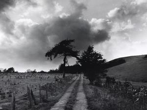 Roman Road, Ceirieg (Vintage) Drovers Roads, Wales by Fay Godwin