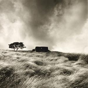 Top Withens Near Haworth, Yorkshire 1977 by Fay Godwin