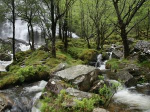 An Steall Waterfall That Cascading Down the Face of an Gearanach Above Glen Nevis by Feargus Cooney