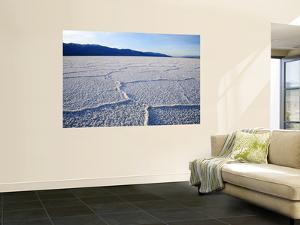 Encrusted Salt Flats at Badwater Basin by Feargus Cooney
