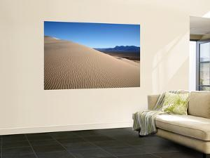 Kelso Dunes in Mojave National Preserve by Feargus Cooney
