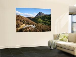 Quinag Mountain in Remote Highlands of Sutherland by Feargus Cooney
