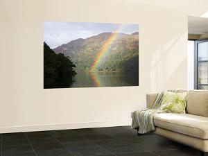 Rainbow over Loch Lomond, Loch Lomond and the Trossachs National Park by Feargus Cooney