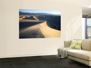 Sand Dunes Near Stovepipe Wells by Feargus Cooney