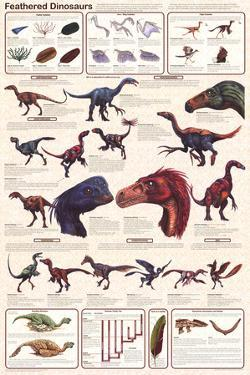 Feathered Dinosaurs Educational Science Chart Poster