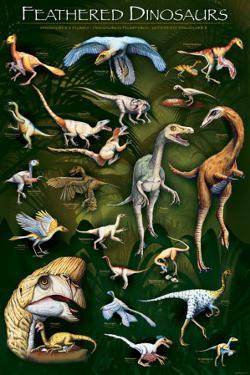Feathered Dinosaurs I