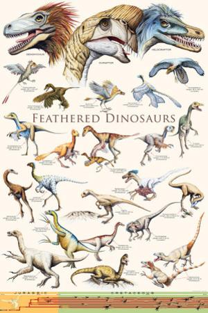 Feathered Dinosaurs II