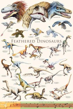Feathered Dinosaurs II