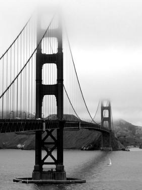 Golden Gate Bridge by Federica Gentile