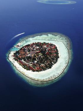 Kurumba Island, North Male Atoll, Kaafu, Maldives by Felix Hug