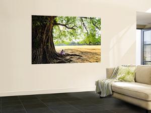 Man Sitting under a Banyan Tree by Felix Hug