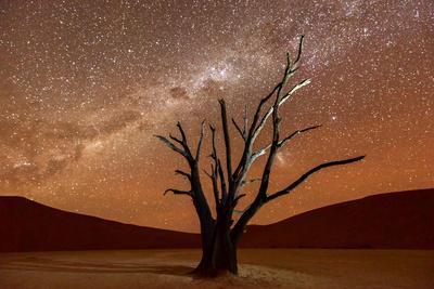Dead Vlei, Dusk, the Namib-Naukluft National Park of Namibia