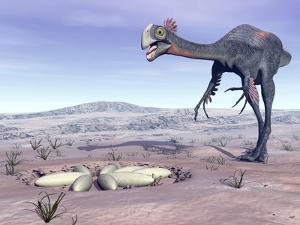 Female Gigantoraptor Dinosaur Walking to its Nest Full of Eggs