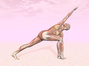 Female Musculature Performing Revolved Side Angle Yoga Pose