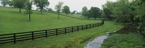 Fence in a Field, Woodford County, Kentucky, USA