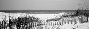Fence on the Beach, Bon Secour National Wildlife Refuge, Gulf of Mexico, Bon Secour