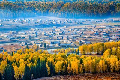 Autumn Scenery, Hemu Village, Xinjiang China by Feng Wei Photography