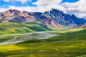 Denali National Park, Alaska USA by Feng Wei Photography