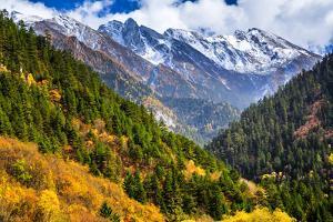 Jiuzhaigou National Park, Sichuan China by Feng Wei Photography
