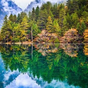 Mirror Lake, Jiuzhaigou National Park, China by Feng Wei Photography