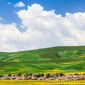 Summer Landscape by Feng Wei Photography