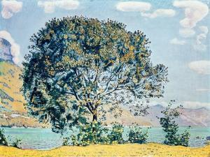 A View of Lake Brienz from Bodeli by Ferdinand Hodler