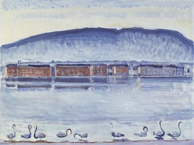Lake Geneva with Mont Salève and Swans