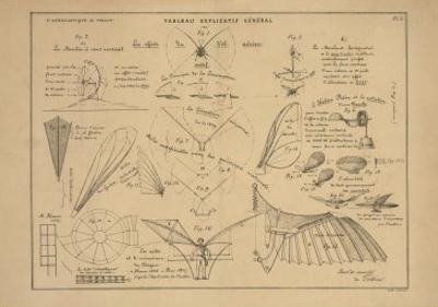 21 Figures about Aeronautics: Mechanics of Insect Flight and More