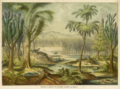 Animals and Plants of the Carboniferous Era in Europe