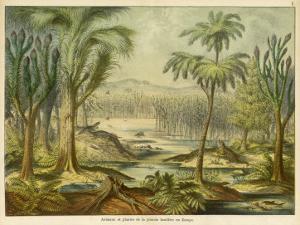 Animals and Plants of the Carboniferous Era in Europe by Ferdinand Von Hochstetter