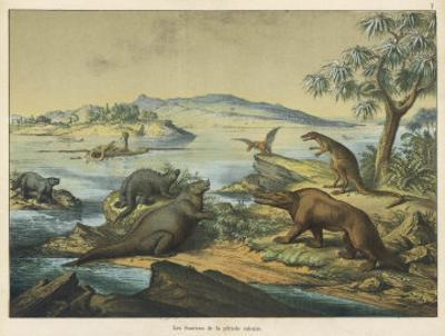 Animals and Plants of the Post-Jurassic Era in Southern England
