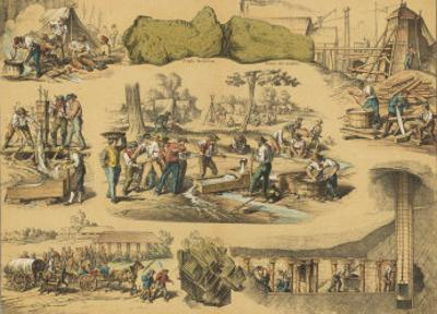 Scenes from the Australian Gold Rush