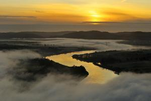 A Misty Morning View Looking Down the River Tay in Autumn, Kinnoull Hill Woodland Park, Scotland by Fergus Gill